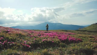 Low angle shot of a young female tourist with a back pack alone walking down the flowered mountain hill. Beautiful mountains on the background. Hiking, being happy. Active lifestyle, hobby.