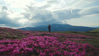 Low angle view of a young woman in sport outfit with backpack wandering alone in the mountains covered with blossoming mountain flowers. Cloudy sky, stunning mountain hills on the background.