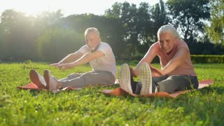 Cheerful aged couple doing stretching exercises outdoors