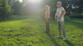 Cheerful aged couple enjoying morning exercises