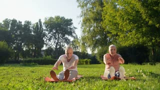Cheerful eldelry couple doing steetching exercises in the park