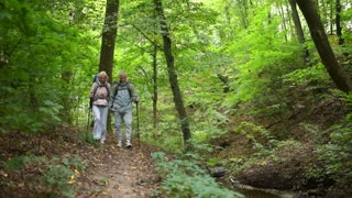 Cheerful elderly couple of tourists walking along the path in the wood