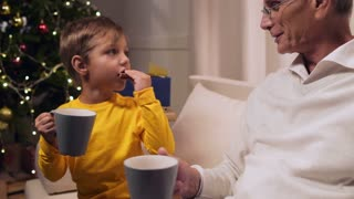 Positive aged man and his grandson drinking tea with cookies