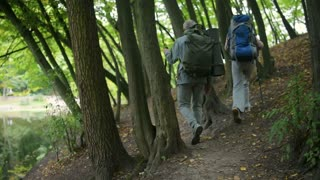 Rear view of an active elderly couple following their route in the forest
