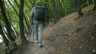 Rear view of an aged couple of tourists walking in the wood