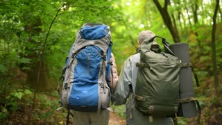 Rear view of an eldelry couple walking in the forest
