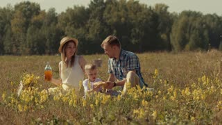 Cheerful family in field with picnic