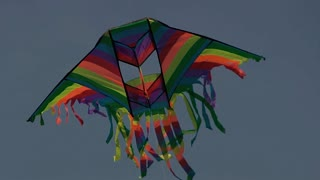 Close-up of beautiful bright kite against blue clear sky