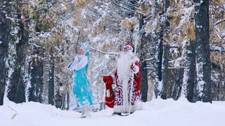 Father Frost and Snow Maiden in beautiful snowy forest walking together