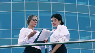 Female coworkers discussing their business cooperation