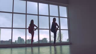 Portrait of two slender women practicing yoga synchronously