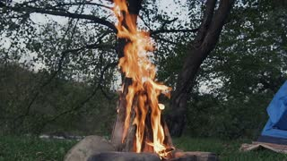 Campfire in the forest by the river slow motion