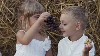 Little girl and boy eating grapes in the field. Lucky children sit in a field under bale of straw. Sunset slow motion