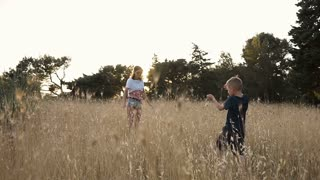The young mother and her son came to the wheat field at sunset slow motion