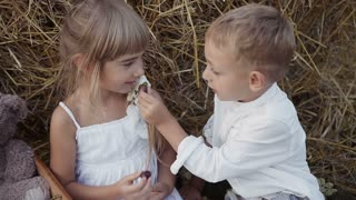 Two beautiful children go in the field of grapes. Happy kids in the field. A boy with a girl in white clothes slow motion