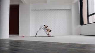 Young woman stretching her legs in yoga standing stretch exercise as part of a fitness routine or active lifestyle. Fitness girl doing warm-up before workout doing toe touch leg stretches indoors in