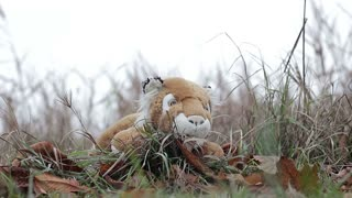 Abandoned toy lies on the grass in autumn