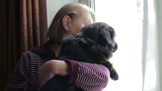 Elderly woman with her dog looking out the window. close-up