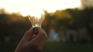 man's hand holding a light bulb against the sunlight