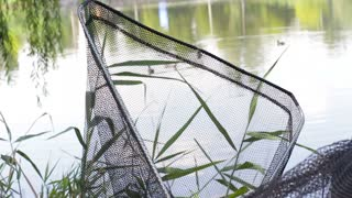 View through landing net. Ducks floating on a pond