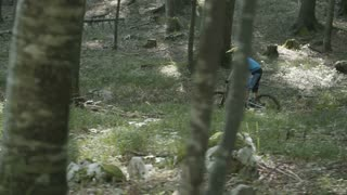 Biker riding downhill in the forest.