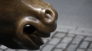 An insert of the iconic Wall Street Charging Bull's Nose and mouth