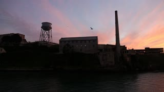 Birds circle Alcatraz at Sunset. View from boat.