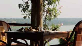 Birds dance around a lunch table overlooking a river vista
