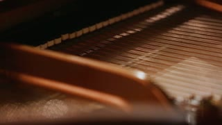 Shallow Depth of Field Piano Keys playing from the Back Side