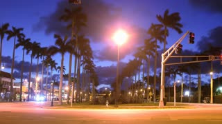 Short timelapse of night Traffic and Palm Trees in Palm Beach Florida