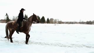 female cowboy rides a horse at a gallop