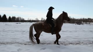 Girl cowboy on a horse - a step backwards