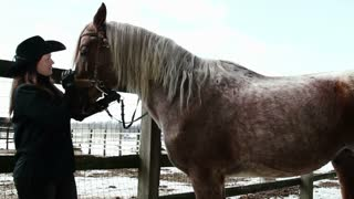girl cowboy stroking horse
