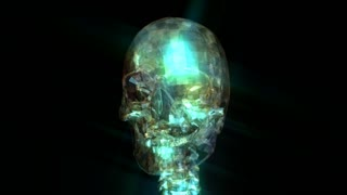 Animation of a Human Skull