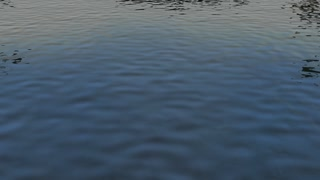Animation of a Water Surface