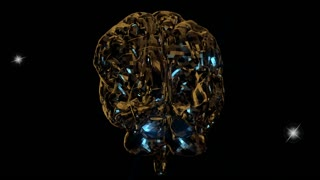 Animation of the human Brain