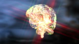 Digital 3D Animation of a human Brain