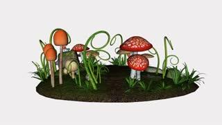 Mushroom Glade, animation,loop,Alpha Channel