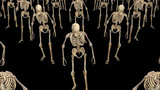 A crowd of skeletons are walking, animation, Alpha channel