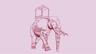 elephant walking, loop