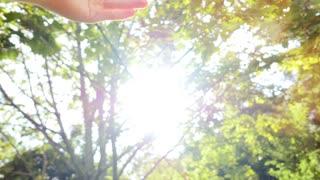 into the light - raising hands - sun flare - happiness