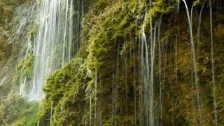 natural water. fresh spring waterfall. green nature