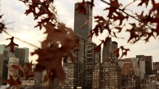 new york city. skyline metropolis. cityscape background
