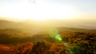 overlooking colorful autumn landscape. forest trees background