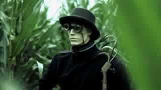 scarecrow. scare crow. mysterious dummy. spooky. horror. strange man