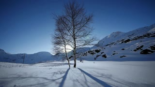 time lapse of winter landscape background. person walking