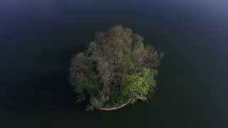 Aerial shot of small island in lake with large tree