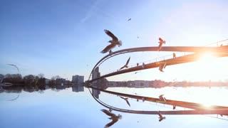 water reflection. bridge landscape. birds flying. slow motion. sunset