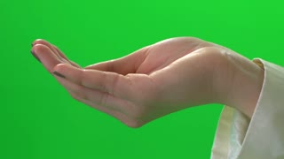 women's hand isolated green screen