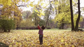 Boy touching leaves with a stick, steadycam shot, slow motion shot